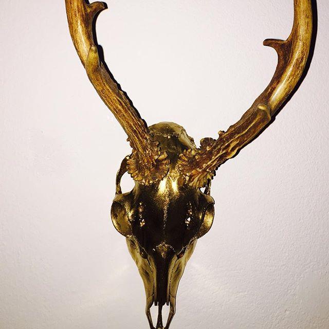 Zum goldenen Hirsch oder so…#gold #deer