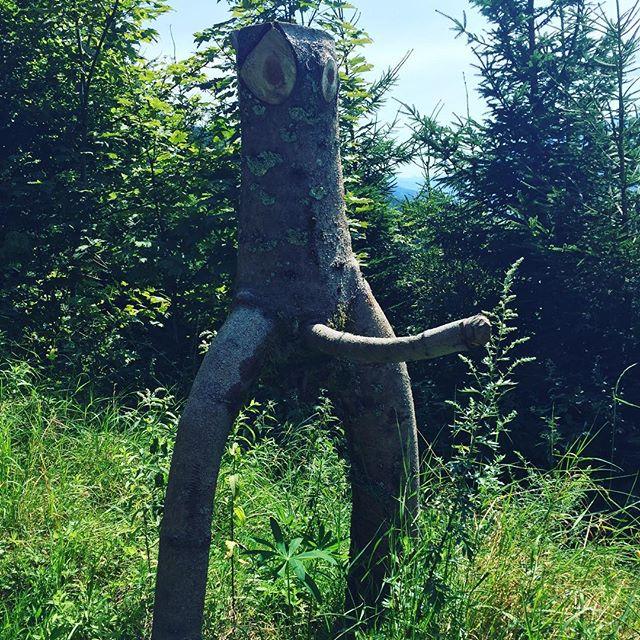 Anstößiges Wandern in Rottenmann