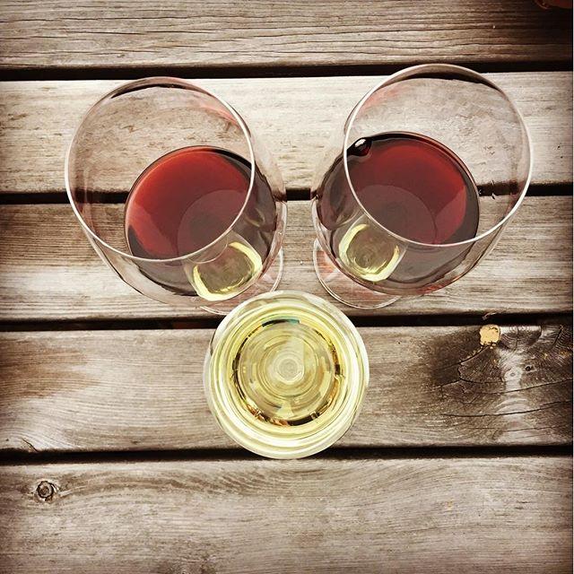 Wein zu dritt! #wine #iseefaces #summer #lastdaysofsummer