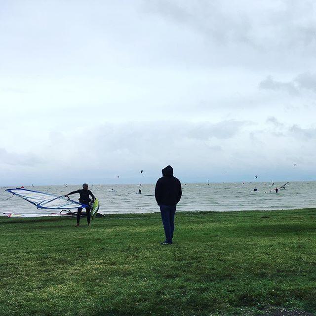 Der Beobachter #surfer #neusiedlersee