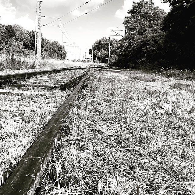 Hier fährt die Bahn nicht mehr…#vienna #simmering #bahn #roadbed #oebb #old