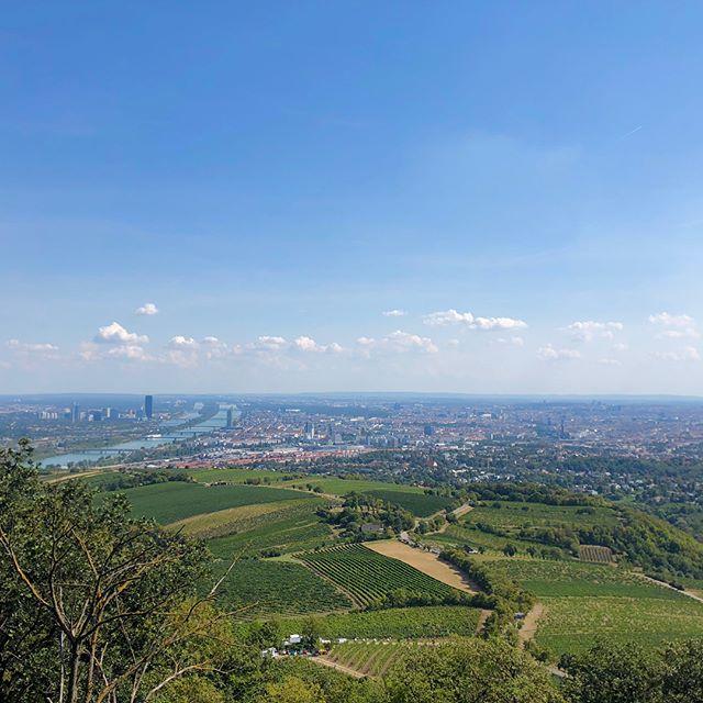 #wienliebe mit einem der bekanntesten Motive: Blick auf Wien vom Kahlenberg