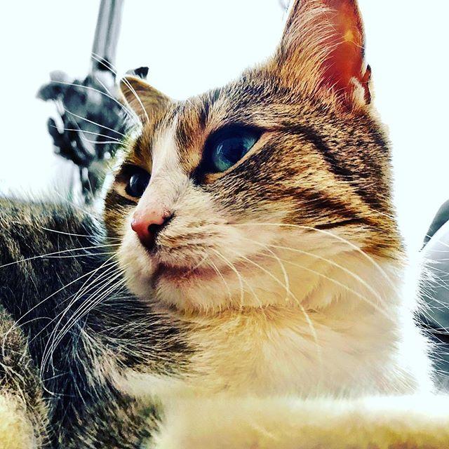 What a cutie, isn't she?!