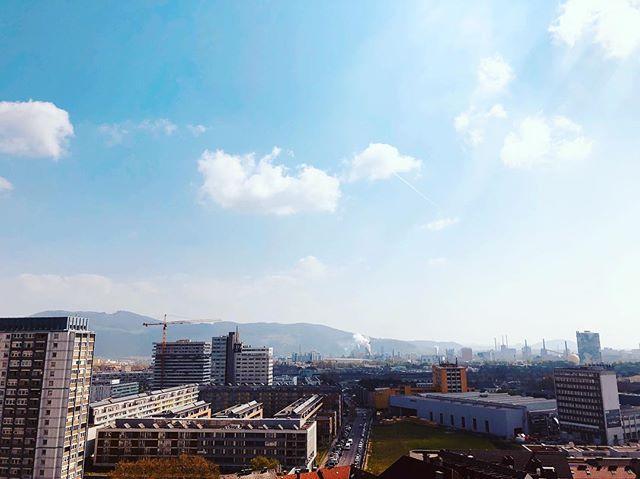 Linzer Skyline