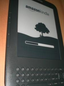 Ein Display-Fehler auf dem Kindle? Der Startbildschirm ist im unteren schwarzen Teil, unterhalb des Fortschrittsbalkens, noch sichtbar. Später allerdings nicht mehr.