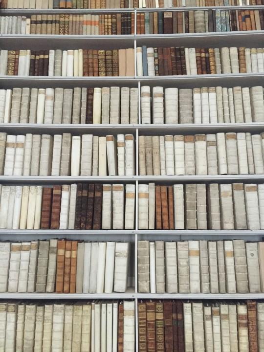 Ein Bücherregal in der Klosterbibliothek des Stift Admont