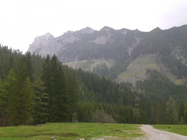Panoramabild in der Kaiserau