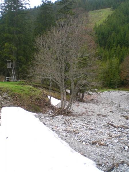 Schnee am Flussbett