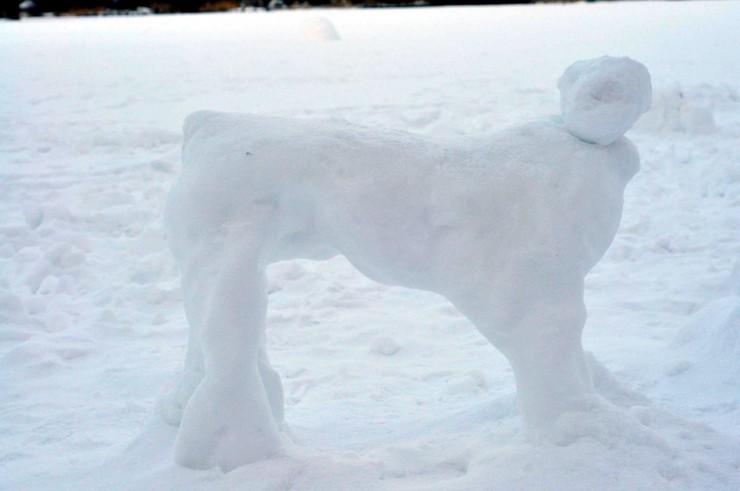 Schneehund