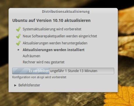 Ubuntu Updatemanager bei der Arbeit